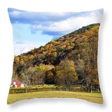 Lone Barn Fall Color Throw Pillow by Thomas R Fletcher
