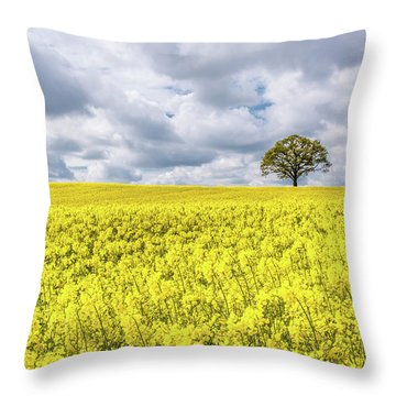 Throw Pillow featuring the photograph Lone Beauty by Nick Bywater