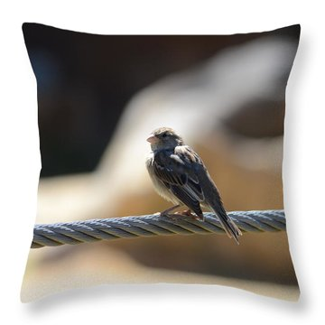 The Sentry Throw Pillow