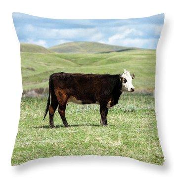 Open Range Throw Pillows