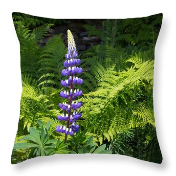 Lone Blue Lupine Throw Pillow