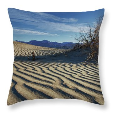 Lone Bush Death Valley Hdr Throw Pillow by James Hammond