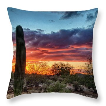Lone Cactus Throw Pillow