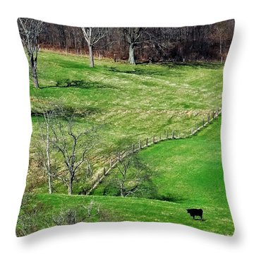 Lone Cow Throw Pillow