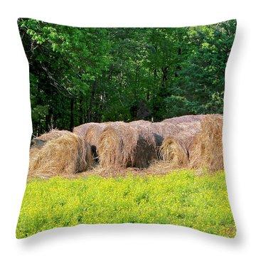 Lone Cow Guard, Smith Mountain Lake Throw Pillow