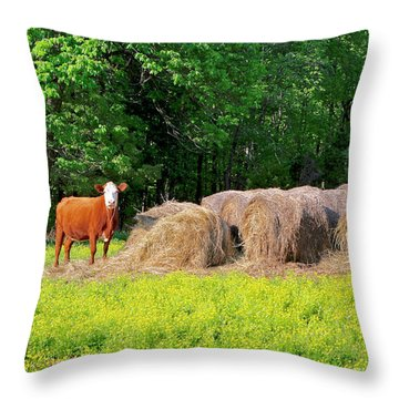 Lone Cow Guard, Smith Mountain Lake Throw Pillow