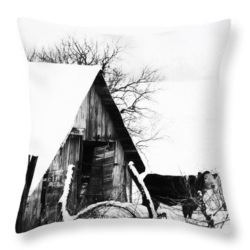 Lone Cow In Snowstorm Throw Pillow