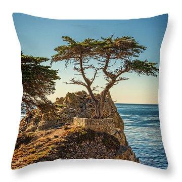 Lone Cypress Tree Throw Pillow by James Hammond