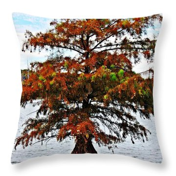 Lone Cypress Tree Throw Pillow by KayeCee Spain