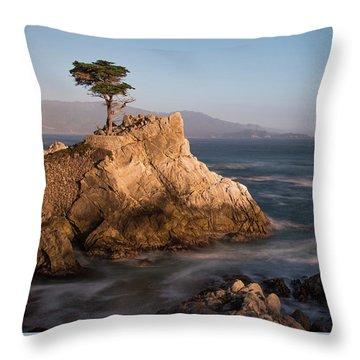 lone Cypress Tree Throw Pillow