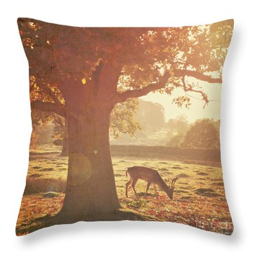 Throw Pillow featuring the photograph Lone Deer by Lyn Randle