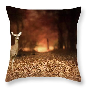 Throw Pillow featuring the photograph Lone Doe by Darren Fisher