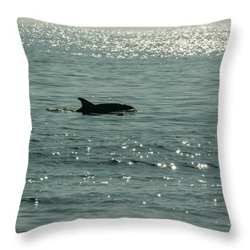 Lone Dolphin Throw Pillow