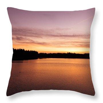 Lone Duck Throw Pillow