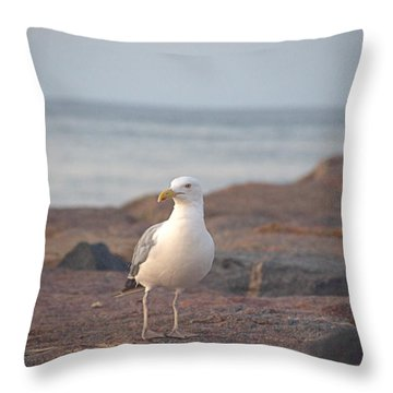 Throw Pillow featuring the photograph Lone Gull by  Newwwman