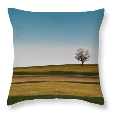 Lone Hawthorn Tree II Throw Pillow