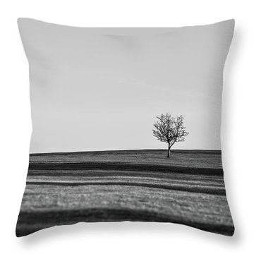 Lone Hawthorn Tree Iv Throw Pillow by Helen Northcott