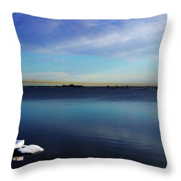 Lone Ice Throw Pillow