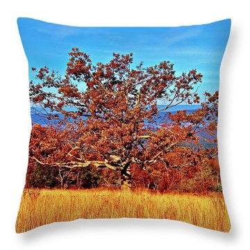 Lone Mountain Tree Throw Pillow