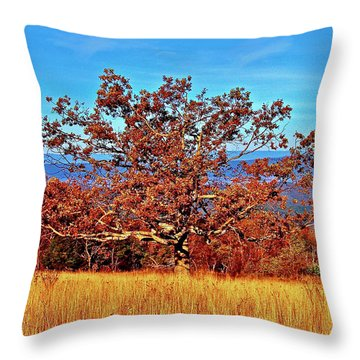 Lone Mountain Tree Throw Pillow