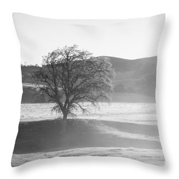Lone Oak, Clearing Fog, San Andreas Rift Valley Throw Pillow