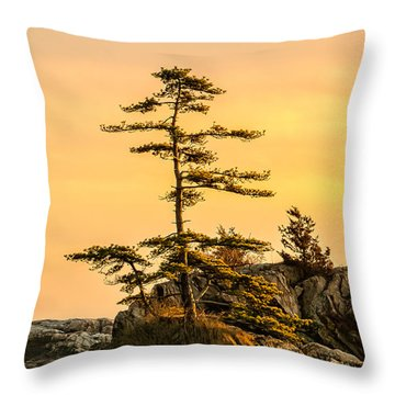 Lone Pine-crow Is. Throw Pillow by Michael Hubley