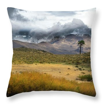 Throw Pillow featuring the photograph Lone Pine High Desert Nevada by Frank Wilson