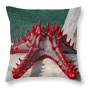 Lone Red Starfish On A Wooden Dhow 3 Throw Pillow