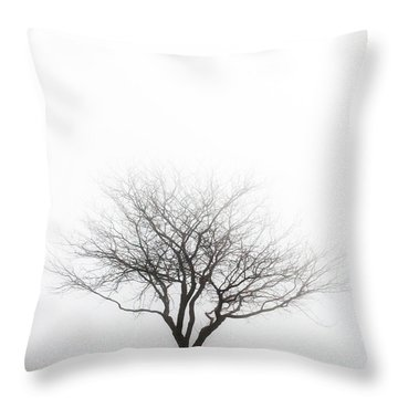 Lone Reflection Throw Pillow