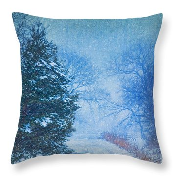 Lone Snowy Lane Throw Pillow