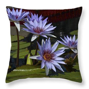 Lone Star Waterlilies Throw Pillow