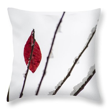 Throw Pillow featuring the photograph Lone Survivor by Deborah Smolinske