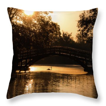 Lone Swan Up For Dawn Throw Pillow
