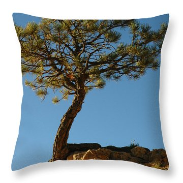 Lone Tree And Moon In Bryce Canyon Throw Pillow