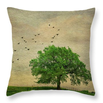Throw Pillow featuring the photograph Lone Tree by Anna Louise