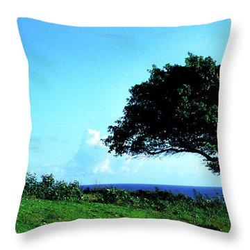 Lone Tree Blue Sea Throw Pillow by Thomas R Fletcher