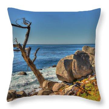 Lone Tree California Coast Throw Pillow by James Hammond