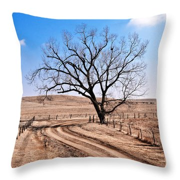 Lone Tree February 2010 Throw Pillow