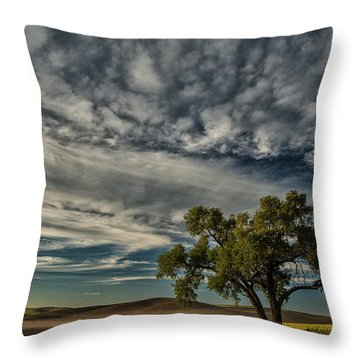 Lone Tree In Field Throw Pillow