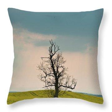 Lone Tree In Rape Field 3 Throw Pillow