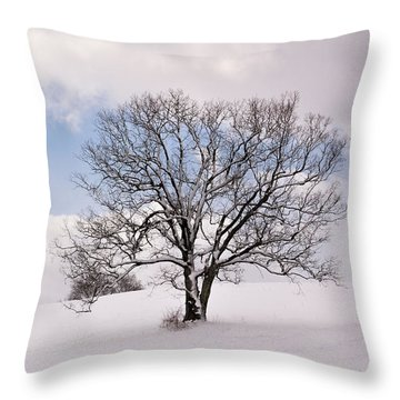 Lone Tree In Snow Throw Pillow
