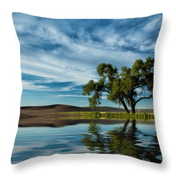 Lone Tree Pond Reflection Throw Pillow