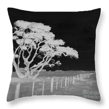 Lone Tree, West Coast Throw Pillow