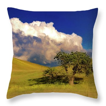 Lone Tree With Storm Clouds Throw Pillow