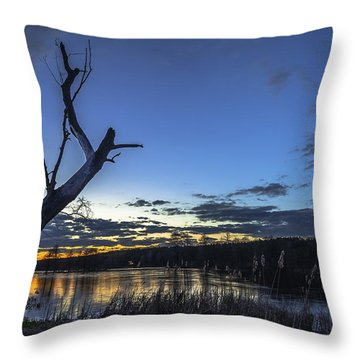 Throw Pillow featuring the photograph Lone Witness by Julis Simo