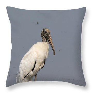 Lone Woodstork Throw Pillow by Kathy Gibbons