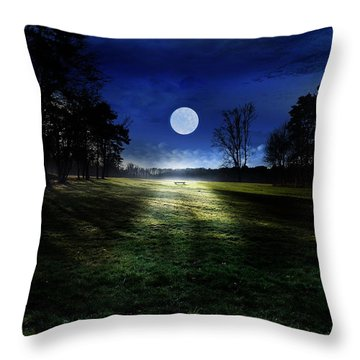 Loneliness Throw Pillow by Bernd Hau