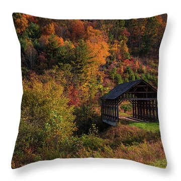 Lonely Bridge Throw Pillow