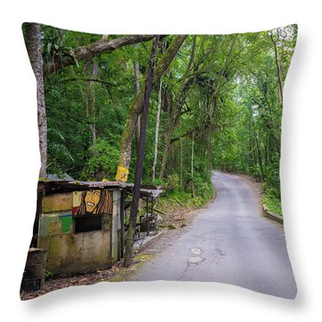 Lonely Country Road Throw Pillow