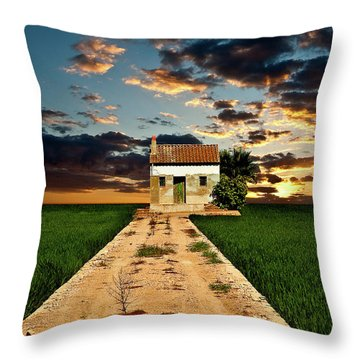 Throw Pillow featuring the photograph Lonely Farm House  by Harry Spitz